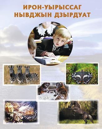 Изображение «Осетинско-русский иллюстрированный словарь»